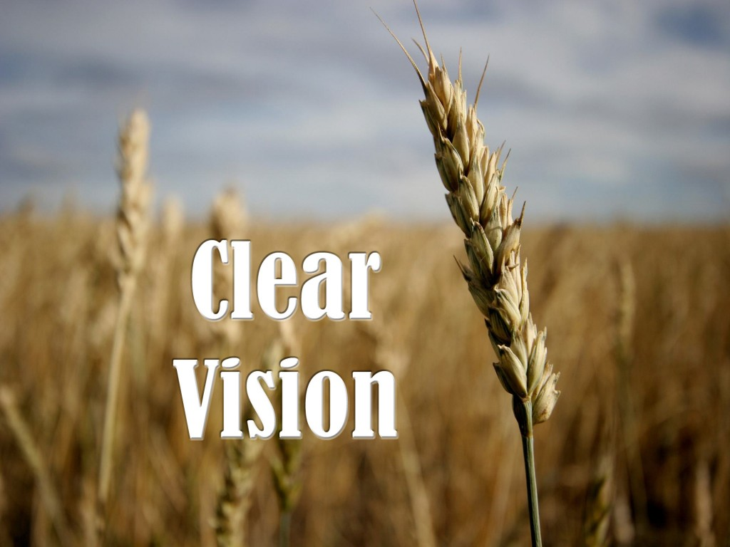 Clear Vision - Courtship vs Dating